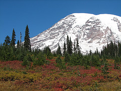 mount ranier photo by designatednaphour
